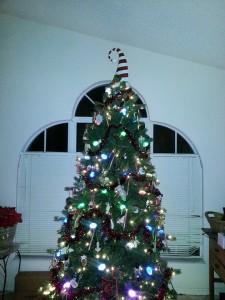 christmas, 2013, christmas tree, sparkling, lights, season, merry christmas, lynne st. james