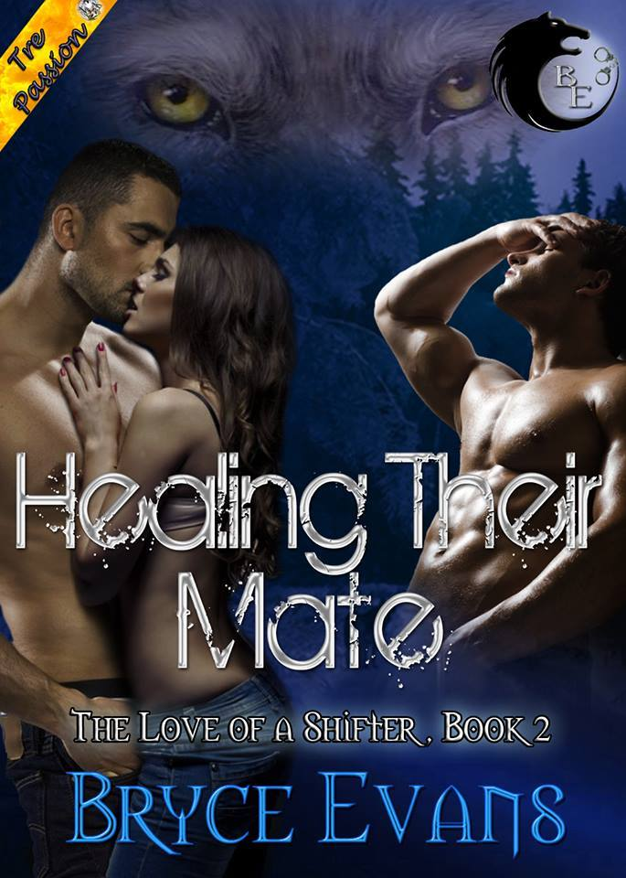 Healing Their Mate, bryce evans, jk publishing, paranormal, shifters,