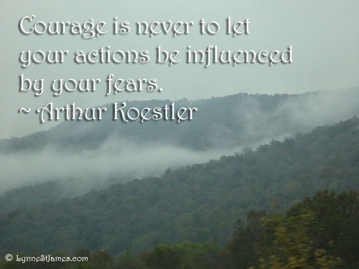 courage, fear, monday quotes, monday, quote, action, fears, influence, arthur koestler, koestler, lynne st. james