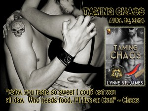 taming chaos, raining chaos, lynne st. james, JK publishing, rocker romance, erotic romance, rock band, heavy metal, guitar players, rock n' roll, chaos, touring,