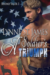 A Soldier's Triumph, beyond valor, military romance, series, romance, military, army, wounded warriors, second chances, love, family