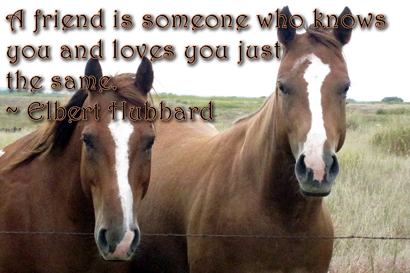 friendship, friends, love, support, elbert hubbard, inspiration, monday quote, quote, lynne st. james