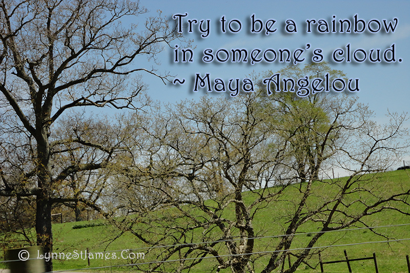 maya angelou, monday quote, monday, quote, inspiration