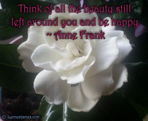 monday quotes, anne frank, beauty, life, love, happiness, lynne st. james, monday quotes, quotes, monday