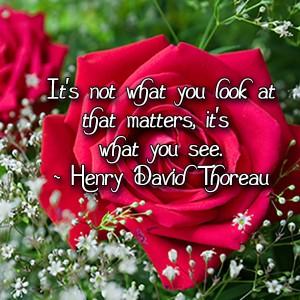 henry david thoreau, thoreau, what matters, see, beauty, truth,