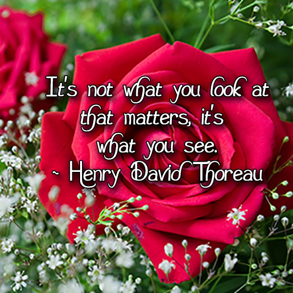 henry david thoreau, thoreau, what matters, see, beauty, truth,