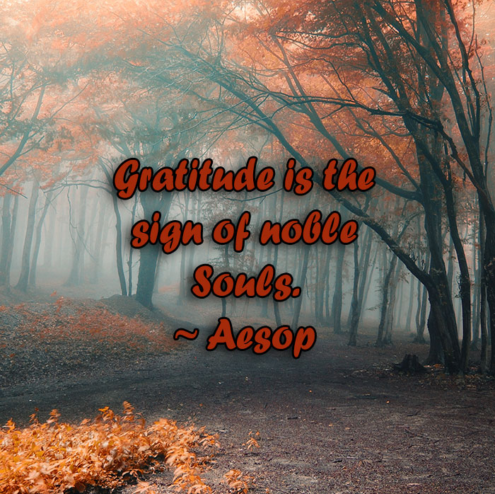 gratitude, noble souls, aesop, lynne st. james, thankful, grateful, inspiration, lnspires, love, monday quotes, quotes, life quotes, gratitude quotes