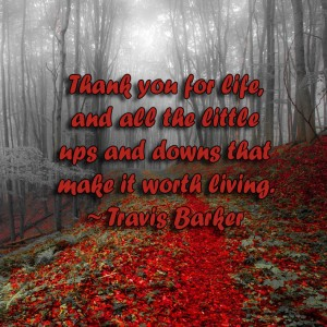 gratitude, thankful, grateful, inspiration, inspire, monday quotes, quotes, monday, inspirational quotes, life quotes, gratitude quotes, travis barker, lynne st. james, life, love, ups and downs, worth living, life,