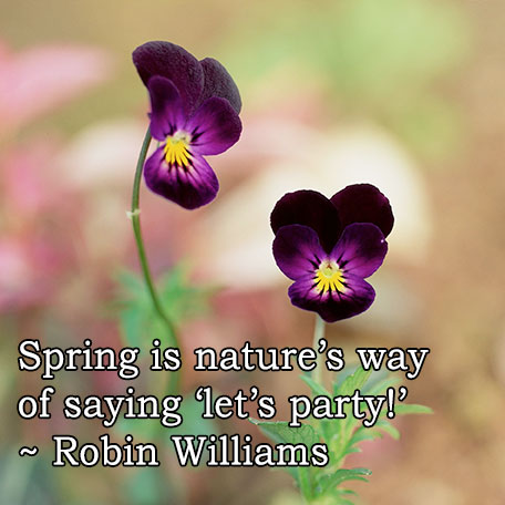 spring, nature, beauty, happiness, new beginnings, robin williams, monday quotes, quotes, monday, lynne st. james