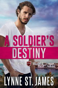 A Soldier's Destiny, beyond valor, second chances, military romance, romantic suspense, lynne st. james